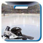 13.5 Sandwich Cushion Hockey
